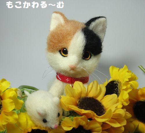 三毛猫3-4