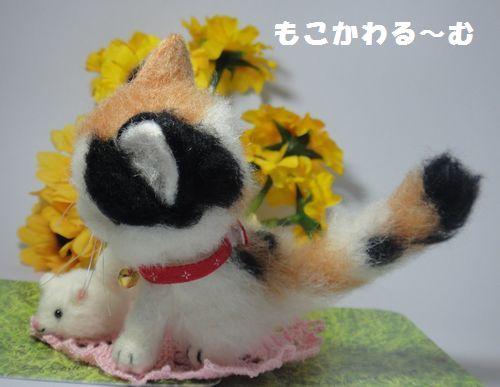 三毛猫3-3