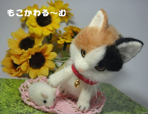 三毛猫3-2