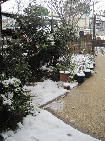 20110211積雪