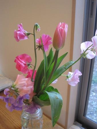 春の花20110201