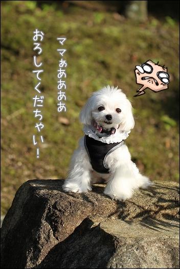 香川用水公園1-7