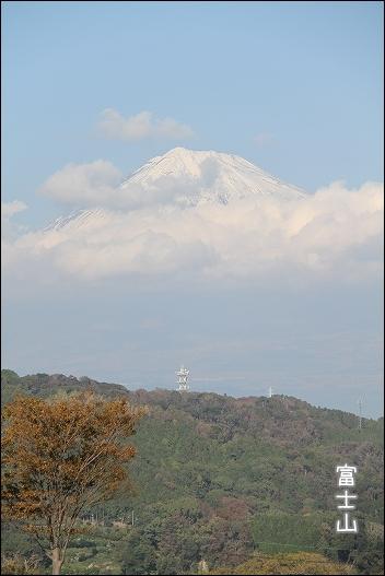 神奈川旅行1