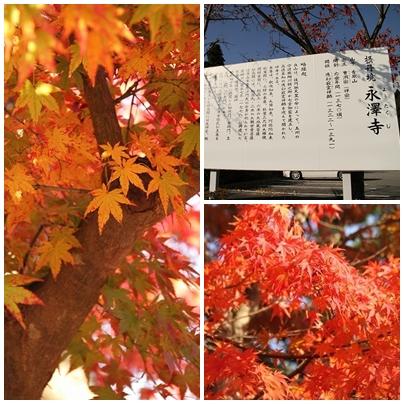 神奈川旅行1-2