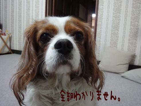 002_20110528233059.jpg