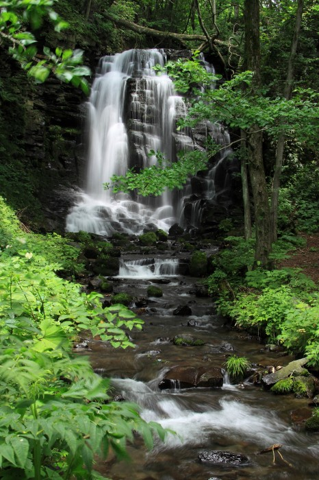 錦見の滝2