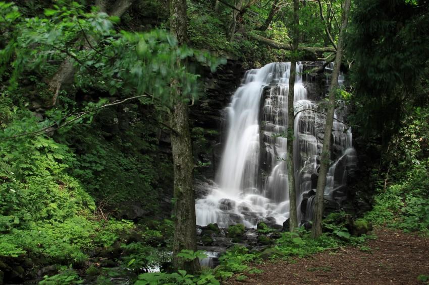 錦見の滝4