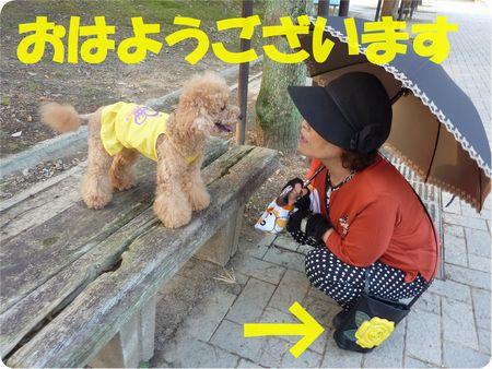 8.1大阪マダム
