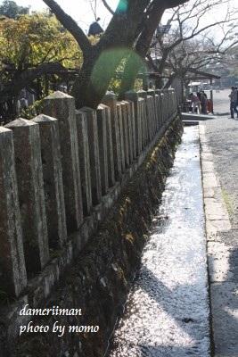 11.24阿蘇神社2