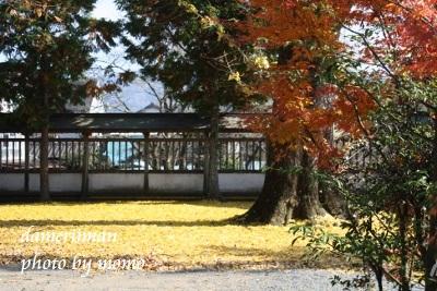 11.24阿蘇神社18