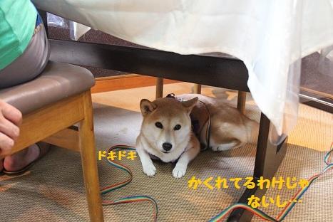 怖いの~?