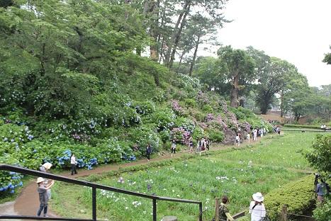 小田原城公園