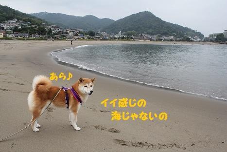 長浜海岸①