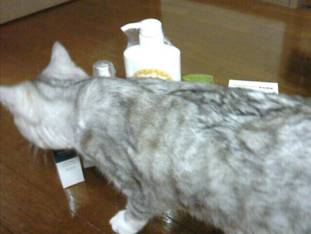 fc2blog_201212071930123b9.jpg