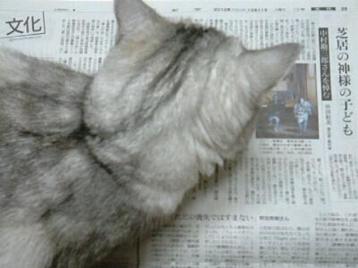 fc2blog_201212112046127e8.jpg