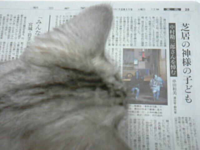 fc2blog_20121211204637e52.jpg