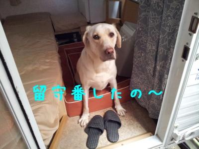20121028_132410.jpg