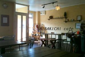 SHIBAKICHI cafe