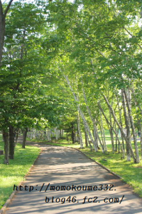 河畔公園♪