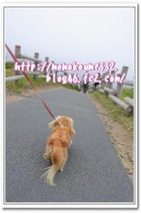 岬 歩きマス♪