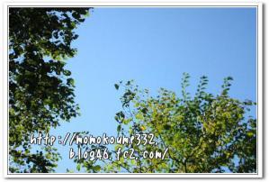 鶴居村の空♪