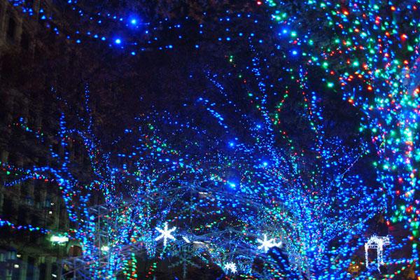 2011-12-25_2733.jpg