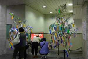 DSC00144駅七夕
