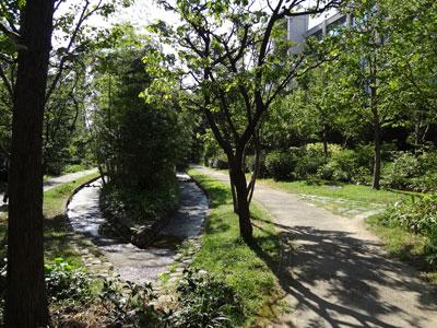 DSC00849庭園
