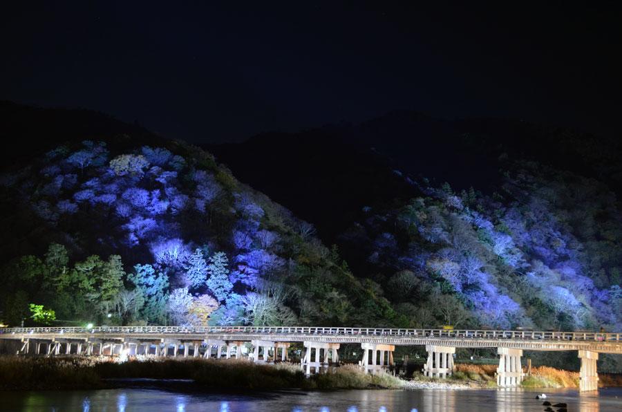 DSC_0439渡月橋5アップ