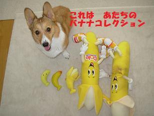 杏のバナナコレクション