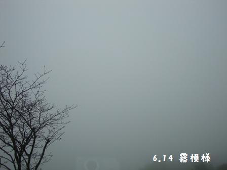 6.14霧