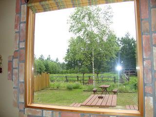 カフェブーオ窓から2