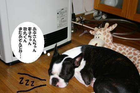 IMG_ストーブ犬