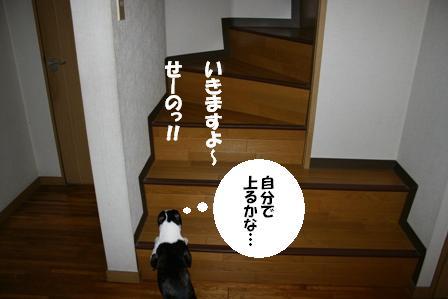 IMG_階段2