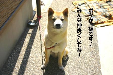 IMG_福ちゃん