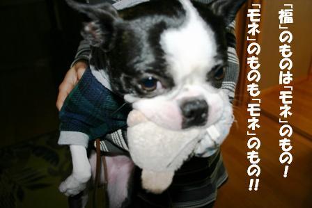 IMG_パンきち3