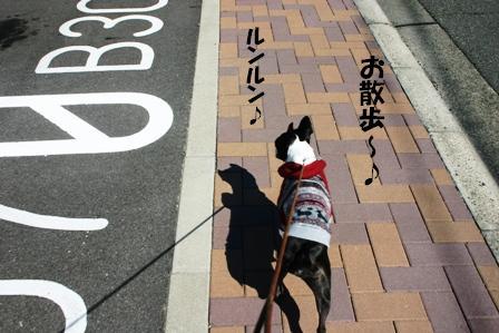 IMG_お散歩ルンルン