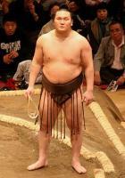 250px-Sumo_May09_Hakuho.jpg