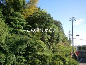 螻ア縲?繝壹う繝ウ繝・convert_20110711173001