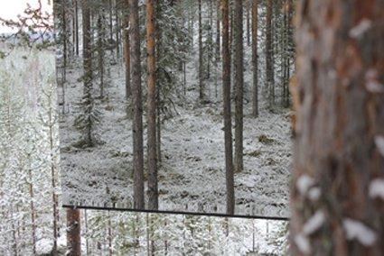 Treehotel_Mirror_Cube_06