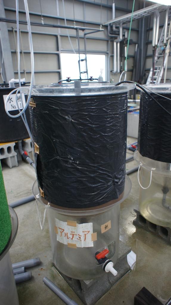 アルテミア増殖樽