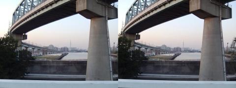 3D写真③11.02.26(交差法)