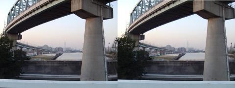 3D写真③11.02.26(平行法)