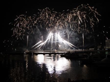 N3847富士の花火