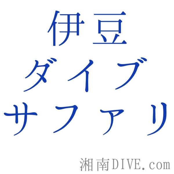 fc2blog_20141015142354f82.jpg