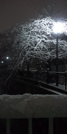 大岡川に降る雪