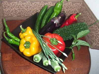 2010_0827野菜