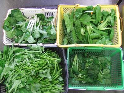 2010_1008野菜