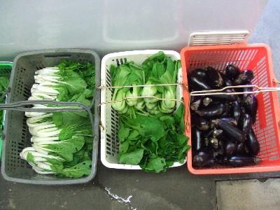 2010_1016野菜1