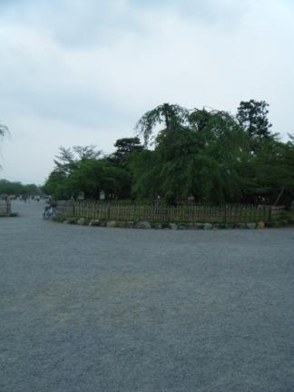 嵐山公園集合場所